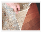 detailing oriental rug cleaning in plantation fl